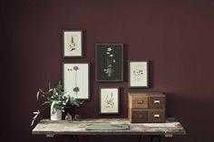 Botanical artprints- vintage A3 and A4