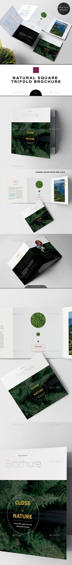 Natural Square Trifold Brochure  — InDesign Template #20x20 #folder • Download ➝ https://graphicriver.net/item/natural-square-trifold-brochure/18475731?ref=pxcr