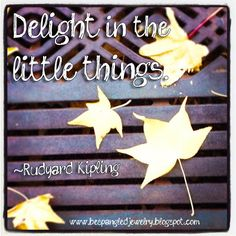 """""""Delight in the little things."""" Rudyard Kipling quote"""
