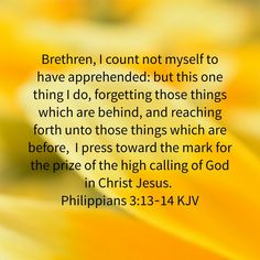 Image result for forget those things that are behind  scripture kjv