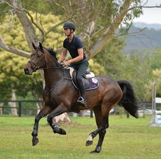 George Morris – It's simple, it's just not easy George Morris, Horse Magazine, Horse Saddles, Western Saddles, Horse Training, Training Tips, Equestrian Outfits, Equestrian Style, Horse Pictures