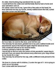 such an adorable story