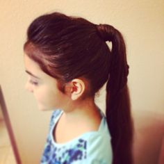 Ponytail / hair style