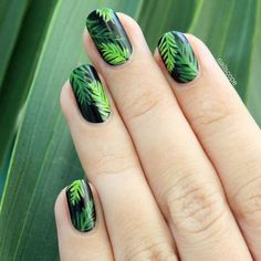Palm Tree Inspiration