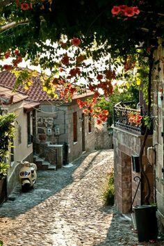 Molyvos village in Lesvos island, Greece Places Around The World, Around The Worlds, Beautiful World, Beautiful Places, Amazing Places, Summer Vacation Spots, Greece Islands, Top Travel Destinations, Greece Travel