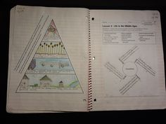 Matt Miller: Interactive Notebooks in Social Studies