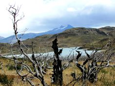 Torres del Paine, sector Pudeto, Patagonia 2015