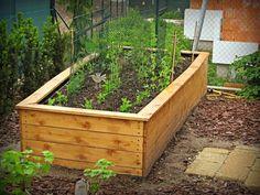 Square Foot Gardening, My House, Pergola, Seeds, Plants, Garden Ideas, Hacks, Compost, Outdoor Pergola
