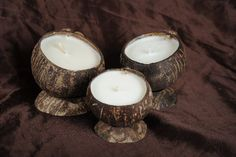 Small Coconut Shell with Essential Oil, Candles Naturally - 100% Natural Candles