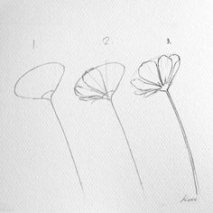 Artist Reveals How To Draw Perfect Flowers In 3 Simple Steps - Drawing - . - blumen -Korean Artist Reveals How To Draw Perfect Flowers In 3 Simple Steps - Drawing - . Easy Flower Drawings, Flower Drawing Tutorials, Simple Flower Drawing, Flower Step By Step, Step By Step Drawing, Watercolor Drawing, Watercolor Illustration, Watercolor Water, Art Drawings Sketches