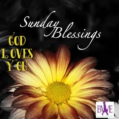 Have a blessed Sunday - Good morning quotes - Blessed Sunday Quotes, Blessed Sunday Morning, Wednesday Morning Quotes, Good Morning God Quotes, Good Morning Funny Pictures, Have A Blessed Sunday, Good Morning Prayer, Morning Inspirational Quotes, Good Morning Gif