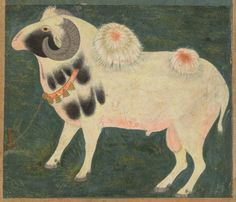 (Detail)A Royal Ram Standing in a Landscape Tethered with a Gold Chain, circa 1585 CE,Mughal.  3 separate imperial portraits of this particular ram survive, suggesting that he was a beloved pet at court. He has been evenly shorn except for the two tufts of wool on his back that have been arranged like flowers and colored with henna. His markings indicate that he is of the rare breed of piebald sheep known as Jacob sheep.