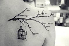 Concept. No bird in cage, perched on branch above
