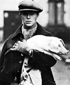 David Bowie carrying a pig ----------- and now he's carrying a pig.....is there nothing the man can't pull off....damn him and his bloody lovely two tone eyes + pig.