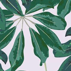Blue Banana Leaf Bird of Paradise Tropical Wallpaper Mural
