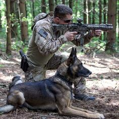 So to the point ... Dog ... Weapon ... Man ! No words! Wow