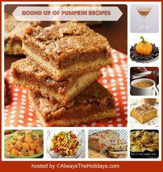 If you love cooking with pumpkin, you will love this Round up of Pumpkin Recipes that features everything from Soup to Drinks!