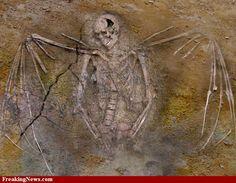 fallen angel, giants, nephilim skeleton with wings
