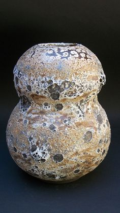 Adam Silverman | アダム・シルヴァーマン | Tomio Koyama Gallery Reminds me of my beautiful gourds -- some of them have amazing patterns from the controlled mold growth - Now dried into the skin permanently (done growing!).