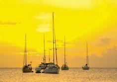 http://vacationrentalstlucia.bravesites.com/blog