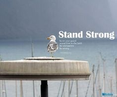 Stand Strong...