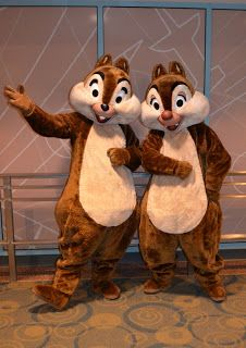 Walt Disney World Hints: Characterpalooza! One of Disney's best-kept Secrets! Oh my goodness I want to do this!!