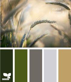 field tones...bedrooms green, dark grey and putty