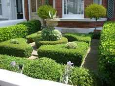 lovely no lawn front yard in formal style Glorious Gardens