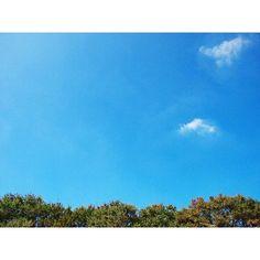 【syota330】さんのInstagramをピンしています。 《___________________  Yes!I say yes!  #ファインダー越しの私の世界  #一眼レフ #山 #バイク #ツーリング #記録 #写真好きな人と繋がりたい #trip #sonyalpha #空 #Kawasaki #森 #photography #自然 #green #forest #カメラマンさんと繋がりたい #japan #公園 #motorcycle #park #風景 #selfie #japanese #olympus #clouds☁ #flowers #nature #sky》