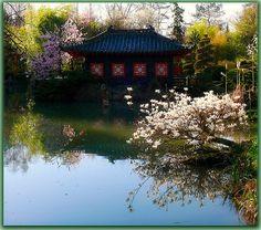 The Asian garden in Münzesheim