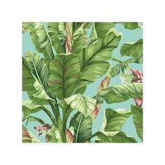 AT7070 Ashford Tropics Banana Leaf Wallpaper