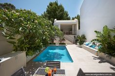 Courtyard Garden | Woollahra by Secret Gardens.