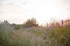 Photography: A place we call home by Lina Gavėnaitė, via Behance