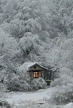 Frosty Cabin