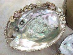 Jeweled abalone