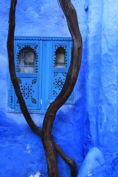 Now that's blue - even electricity meters are covered beautifully (Chefchaouen, Morocco)