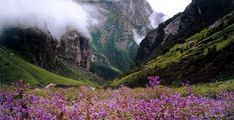 The Kashmir Valley and the Valley of Flowers