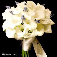 Wedding Bouquet Pictures