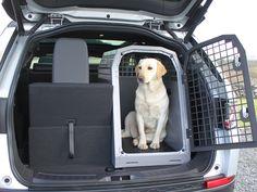 Trans K9 Dog Cages