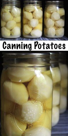Canning Potatoes Canning potatoes in a pressure canner is a simple way to preserve potatoes at home for long term storage. Home-canned potatoes will keep for years at room temperature, without the electricity required for a freezer. Pressure Canning Recipes, Home Canning Recipes, Cooking Recipes, Pressure Cooking, Flour Recipes, Canning Kitchen Ideas, Canning Potatoes, Canning Vegetables, Storing Potatoes