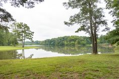 13755 Bethany Rd, Milton, GA 30004 (lot/land) is For Sale - Zillow   22.568 +/- Acres   2,200,000 USD