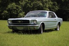 ebay auto  #automobili #occasioni #auto #ebay #macchine #vettura My Beautiful 1964.5 Ford Mustang! [x-post /r/Mustang]