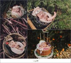 Twig & Olive PhotographyNewborns Archives < Page 5 of 68 < Twig & Olive Photography