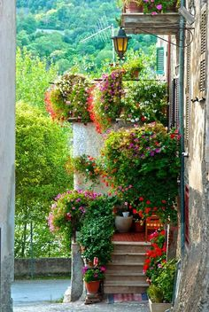 Toscana - Home and Garden - Beautiful World, Beautiful Gardens, Beautiful Places, Beautiful Gifts, Dream Garden, Home And Garden, Tuscan Style, Garden Inspiration, Backyard Landscaping