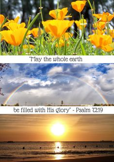 Write to your Compassion Child: Bible Verse Image — My Little Corner of the World