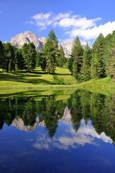 Che splendore di bellezza in un piccolo specchio d'acqua, vero riposo dopo un lungo cammino... (Siamo sulla strada forestale che da Santa…