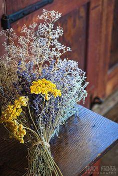 116 meilleures images du tableau fleurs sechees fleurs s ch es pr servation de fleur et. Black Bedroom Furniture Sets. Home Design Ideas