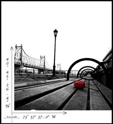 Rose, Bench & Bridge... All you need in NYC