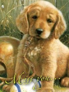 Download Animated 240x320 «Щеночек» Cell Phone Wallpaper. Category: Pets & Animals
