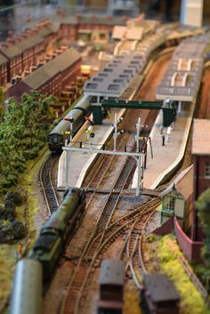 Choosing the right scale model train for you.